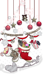 Winter's decoration.png