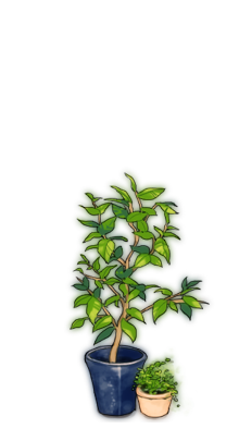Green planter.png