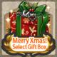 Item Card Xmas Select Gift Box.png